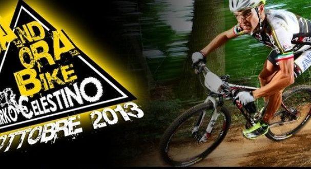 andora-bike-5-jpg
