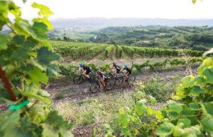 granfondo-kask-soave-bike-jpg