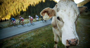 oetztaler-radmarathon-2014-jpg