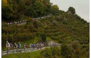 prosecco-cycling-5-jpg