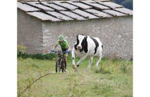 rabensteiner-artiglia-la-lessinia-bike-jpg