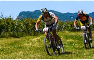 rally-di-romagna-2015-jpg