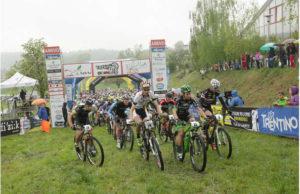 valdinon-bike-paulissen-e-sosna-super-jpg